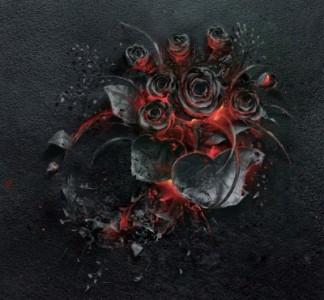ash-rose2