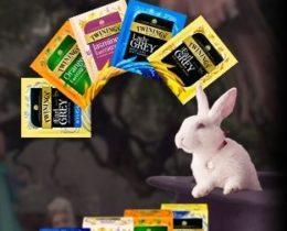 トワイニング紅茶CMがオトナなアリスの世界!ゴス可愛い♥